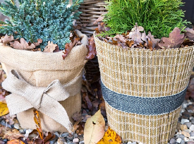 Winter protection for garden and balcony plants